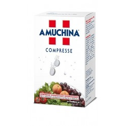 Angelini Amuchina Compresse...