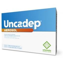 Erbozeta Uncadep Aerosol 10...