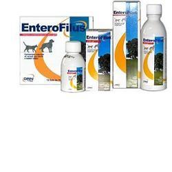 Drn Enterofilus 12x10ml