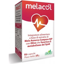 A. V. D. Reform Melacol 60...