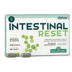 Naturando Intestinal Reset...