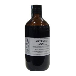 Artemisia Annua Soluzione...