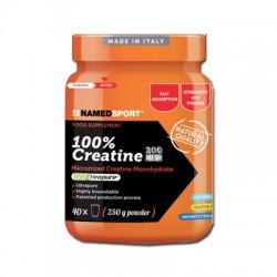 Namedsport Creatina 100% 500 G