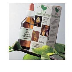 Sangalli Ribes 100ml Mg