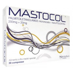 Epitech Group Mastocol...
