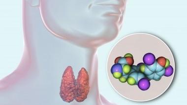 Tiroxina: i benefici per il nostro corpo